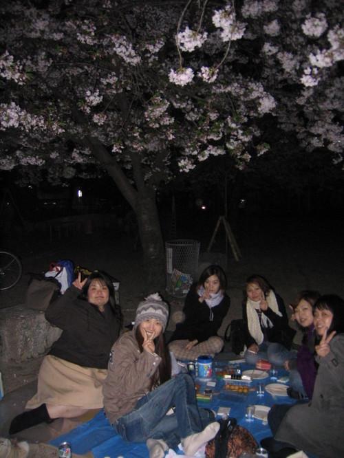 ギリギリの桜・・・